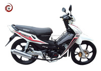 JY-110-51-ASIAN WOLF JIANGRUN CUB MOTORCYCLE FOR WHOLE SALE/ HIGH QUALITY MOTORCYCLE MADE IN CHINA
