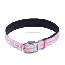 Custom Design Logo Added Neoprene Padded TPU Nylon Dog Collar