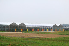 ISO9001:2008-galvanized steel frame green house