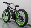 FUJIANG electric bike, electric bike motor, electric chopper bike with EN15194