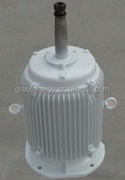 1kw-1000kw Vertical axis shaft generator for vertical axis wind turbine