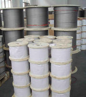 China leading high quality common galvanized crane steel wire rope products