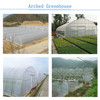 Low Cost Agriculture Greenhouse Farm For