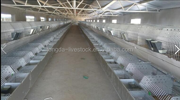 Professional 3 story rabbit hutches with CE certificate metal cage rabbit cage in kenya farm