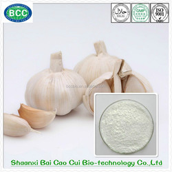 20:1 Professional Manufacturer Pure Natural Garlic GMP Extract