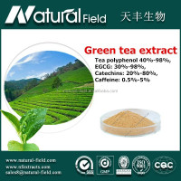 healthy supplements EGCG,Tea polyphenol,Catechin green tea extract powder