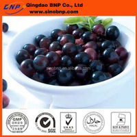 High Quality Acai Berry Capsule from BNP