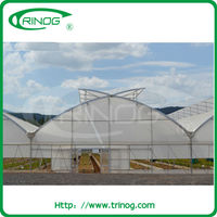 Plastic Film Used Commercial Greenhouses For