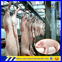 Pig Slaughter Abattoir Line/Slaughter Equipment Machine Equipment Supplier Turnkey Design Project Solution Proposal Lines Slaute