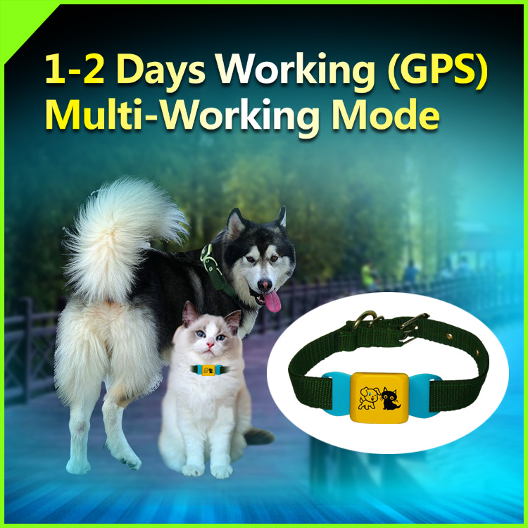 Collar Micro Gps Tracking Chip For Dogs