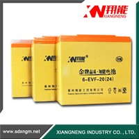 China Electric Vehicles battery 12v battery