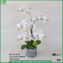 hotsale artificial white orchid flowers,artificial butterfly orchids with cement pot