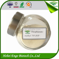 thiophanate methyl 70%WP 500g/l SC fungicide