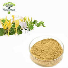 Honey Suckle Flower Extract/Lonicera japonica extract 95%Chlorogenic acid