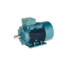 Ever Victory motor YE2 Three Phase induction Motor 300kw Electric Motor