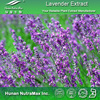 100% Natural Lavender Extract, Lavender Flower Extract, Lavender Plant Extract 4:1 5:1 10:1 20:1