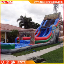 Water Wheel inflatable Water Slide for sale/ inflatable water slide with pool