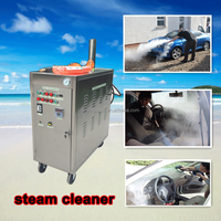 Battery drive LPG heated 20bar steam best car wash product
