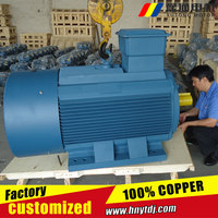 Three Phase Induction Motor Iron Cast Foot Mounted Electric Motor 22kw 60hz