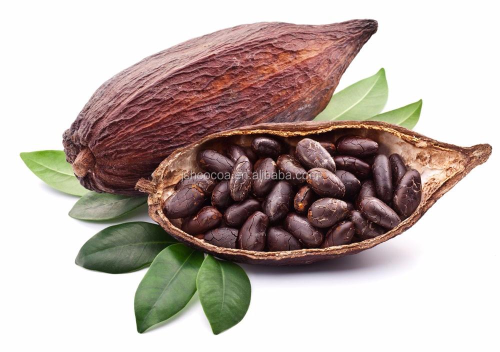 typers of low fat cocoa powder price from Ghana