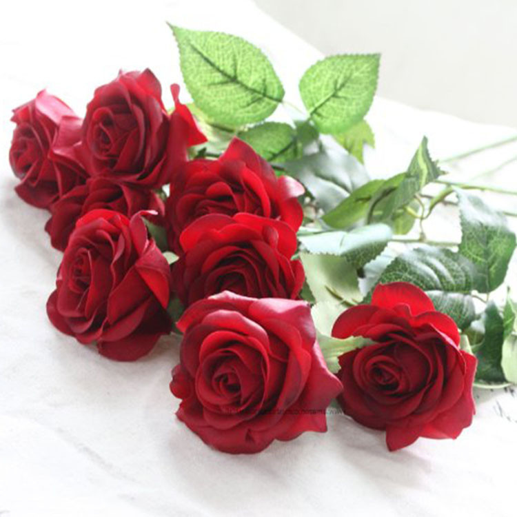 Alibaba online shopping sales flower pictures red alibaba in dubai