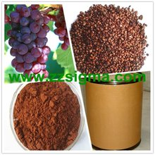95% Proanthocyanidins Grape Seed extract powder(GSE)