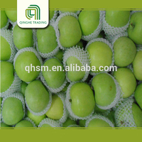 cheap fresh green qinguan apples bulk apples whole sale with high quality