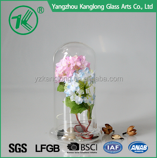 2016 Hot Design High Transparency Pyrex Glass Dome with Base for Preserved Fresh Flower