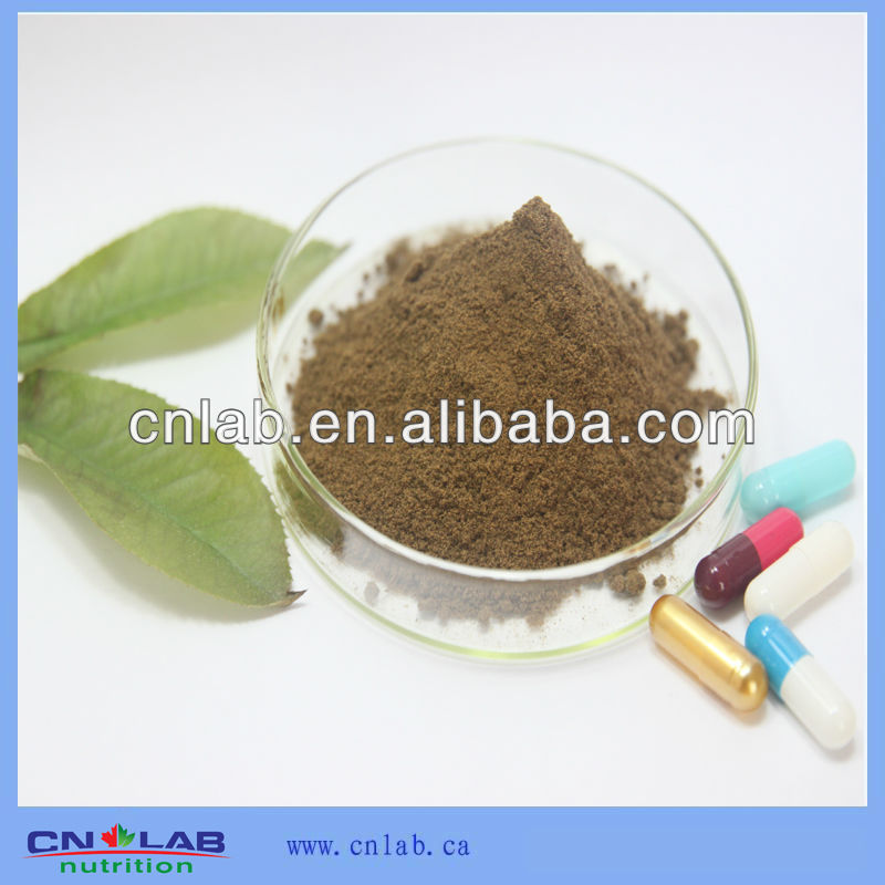 high quality dendrobium extract 10:1HPLC