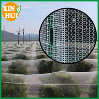 plastic agriculture anti hail net for greenhouse/hail guard net with uv protection