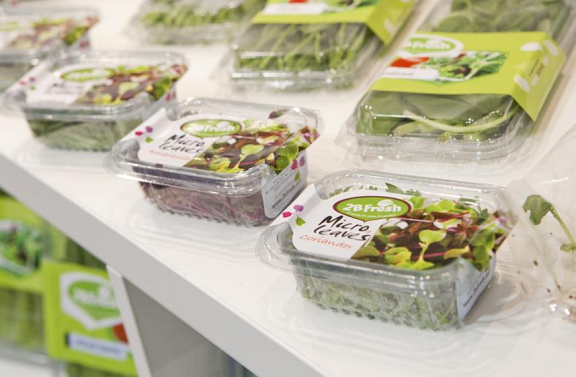 Micro greens - micro herbs from Israel. Flora Export S.G. Israel LTD