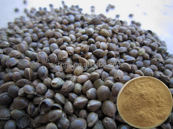 Top grade & low price advanced high quality natural hemp seed extract