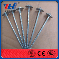 hot selling high quality umbrella head roofing nails