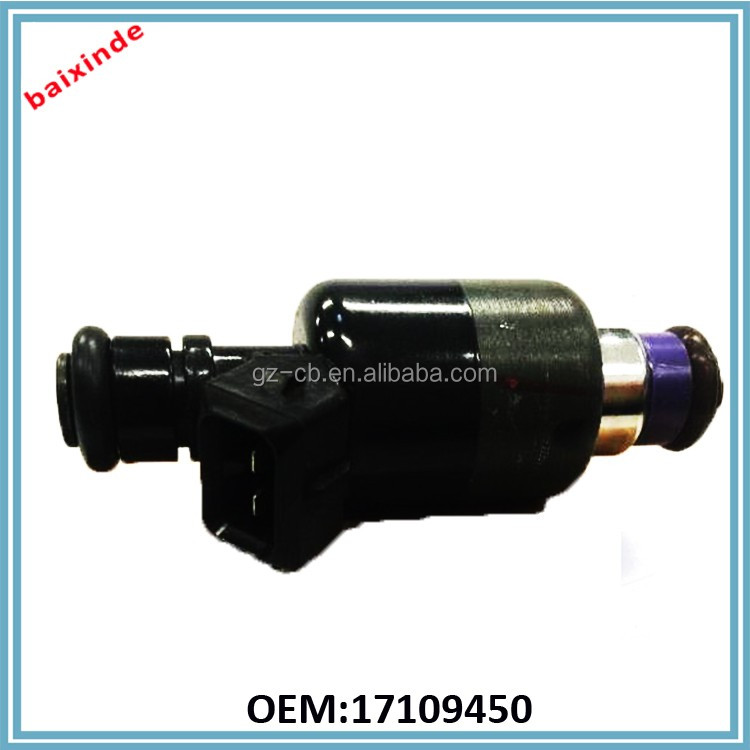 Good Performance High Quality Fuel Injector/Nozzle Fuel System OEM 17109450