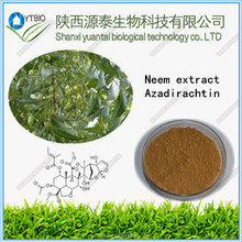 factory supply 100% Pure Camellia seeds extract Tea Saponins