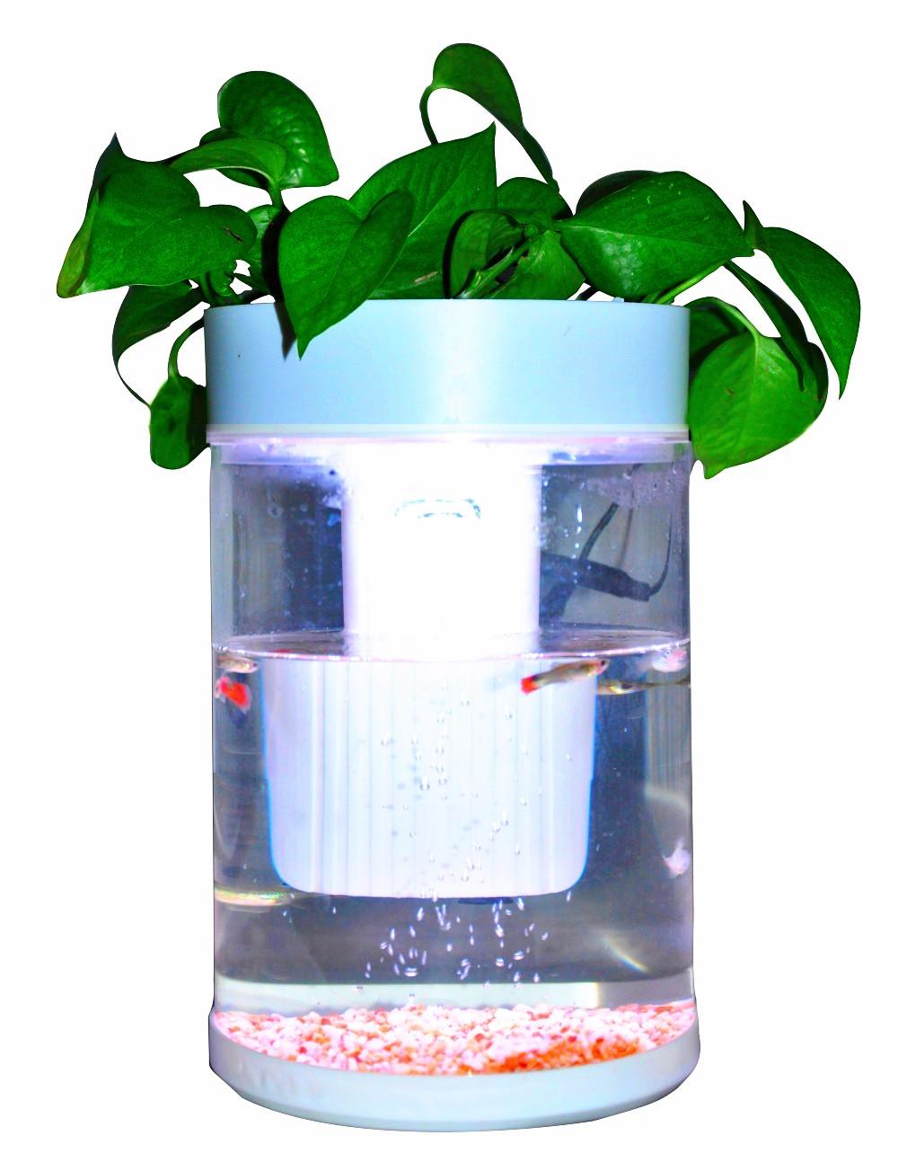 Wholesale plastic fish tank aquarium online buy best for Fish tank online