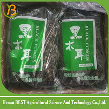 China Dried Black Fungus price for sale