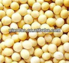 High quality Soy oligosaccharides
