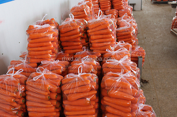 new crop frozen carrot with certificate