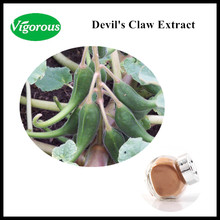 100% natural 3% Harpagoside high quality Devil's Claw Root Extract