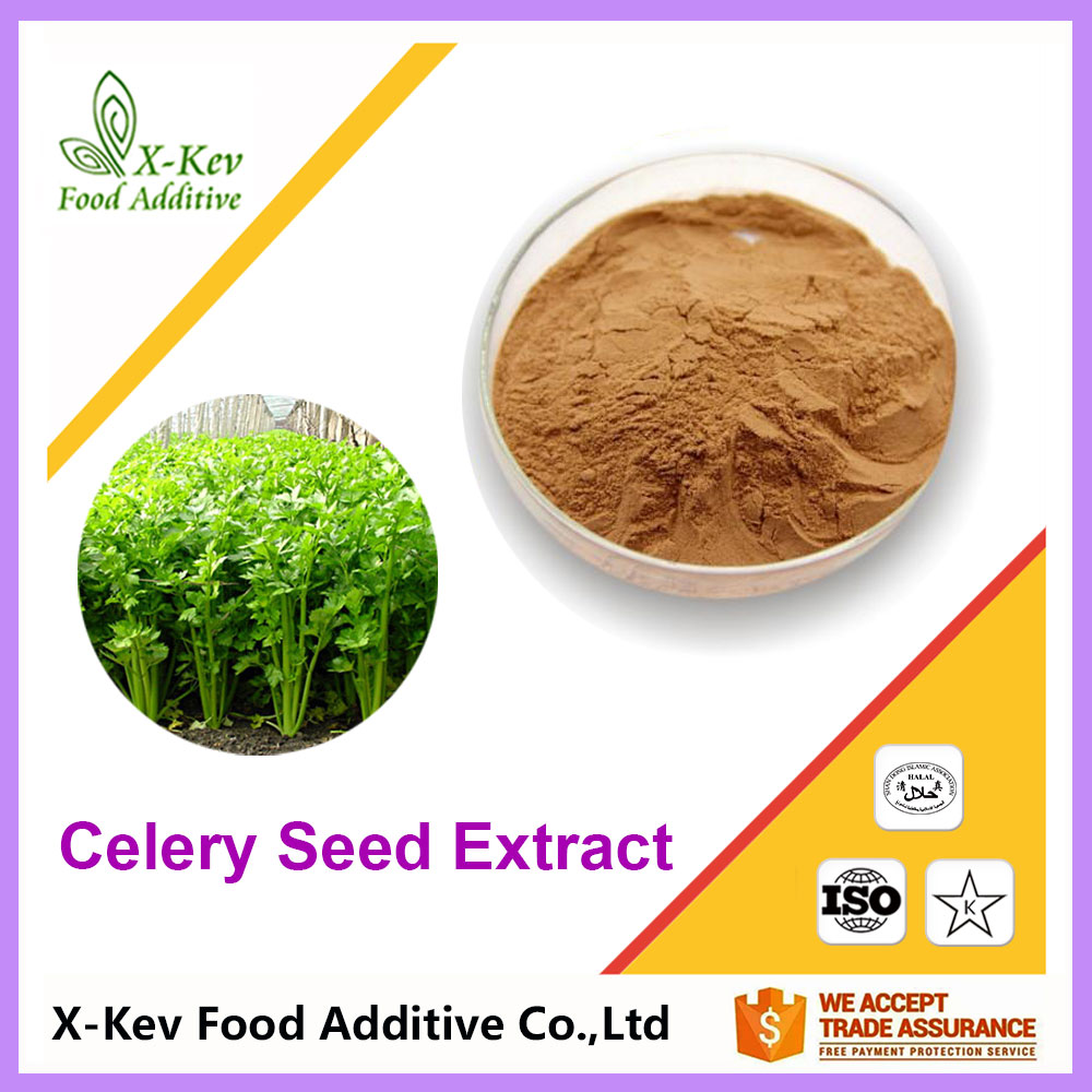 98% Apigenin Pure Natural Celery Seed Extract