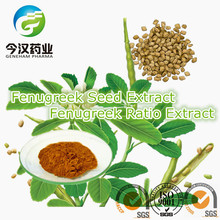 Fenugreek Seed Extract Furostanol Saponin 70% Natural Chinese Herbs for Penis