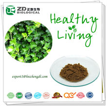 High purity Plant extract Powder 40% Hederacoside C from Chinese Ivy Stem extract Relieving the pain