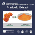 High quality Marigold Extract Lutein 5%