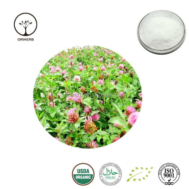 High quality Red Clover Extract red clover p.e