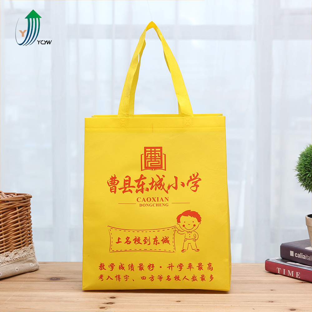 Wholesale pp laminated foldable unique reusable shopping eco non woven cloth bag