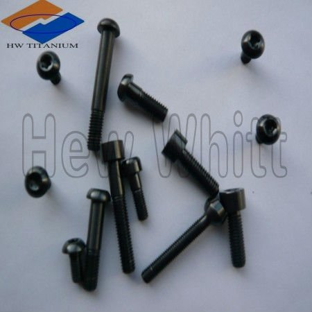 Titanium bicycle bolts