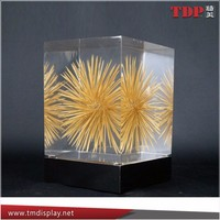 Clear Resin Block Embedded Toothpicks Display Crafts Factory