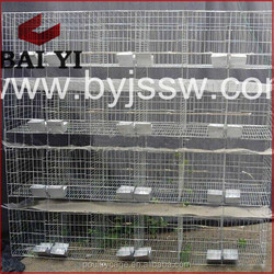 New Fashion Hot Sale Rabbit Cages/Houses/Crates/Kennels With Highest Quality And Low Price