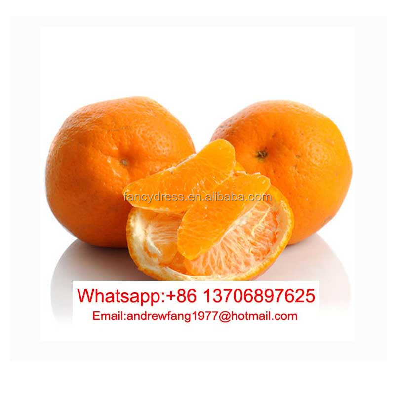 Sweat fruit orange ,orange fruit specification,orange dried fruit